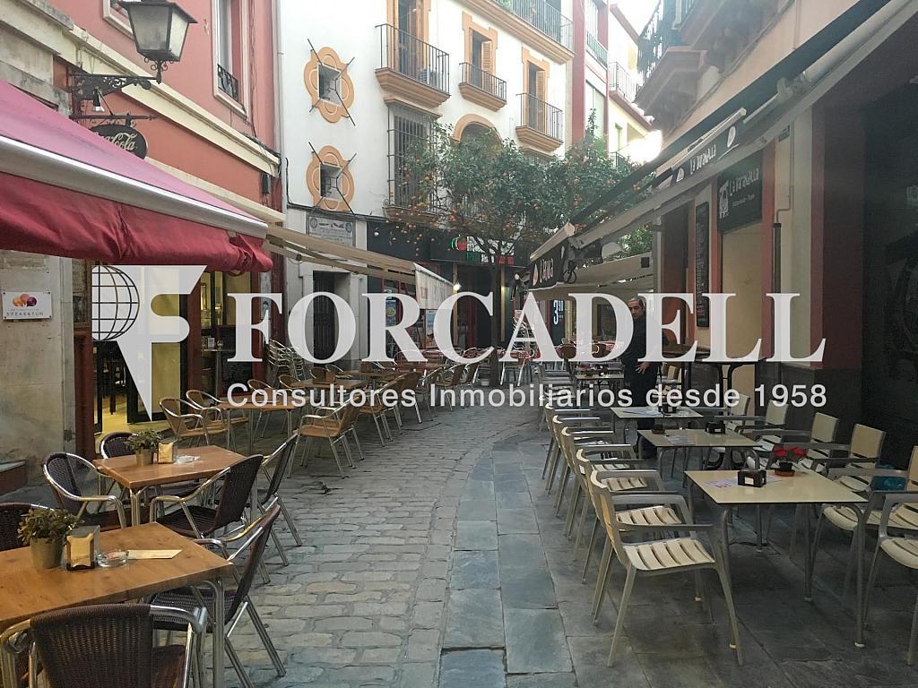 Foto 2 - Local comercial en alquiler en Casco Antiguo en Sevilla - 281186429