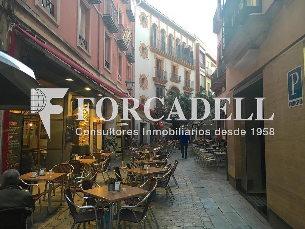 Foto 1 - Local comercial en alquiler en Casco Antiguo en Sevilla - 281186432