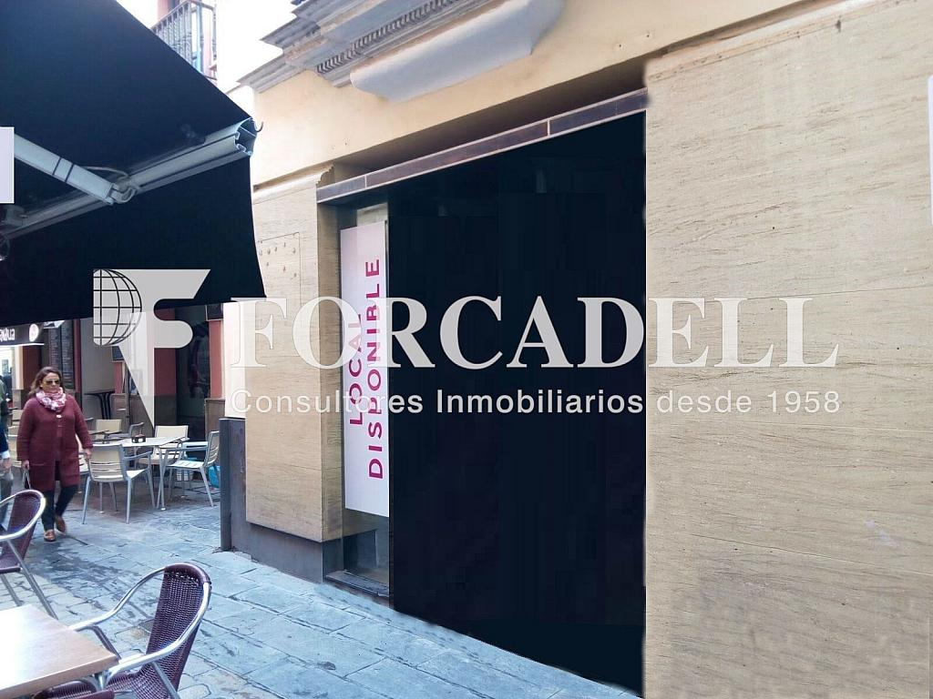 Unnamed - Local comercial en alquiler en Casco Antiguo en Sevilla - 304040829