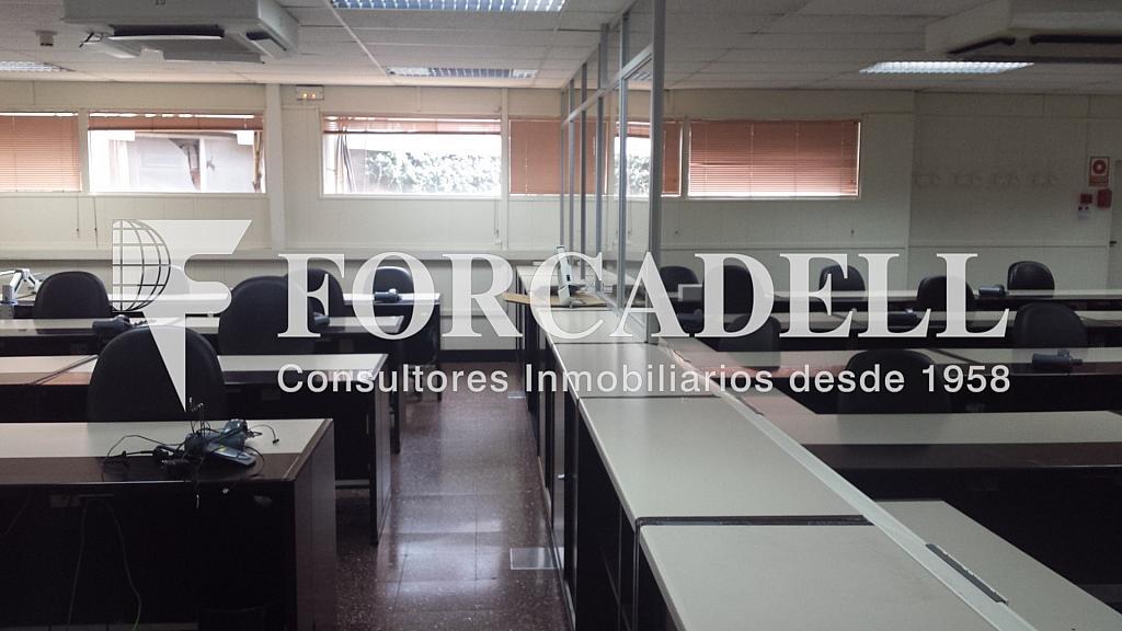 20140324_132925 - Oficina en alquiler en Eixample dreta en Barcelona - 298926494