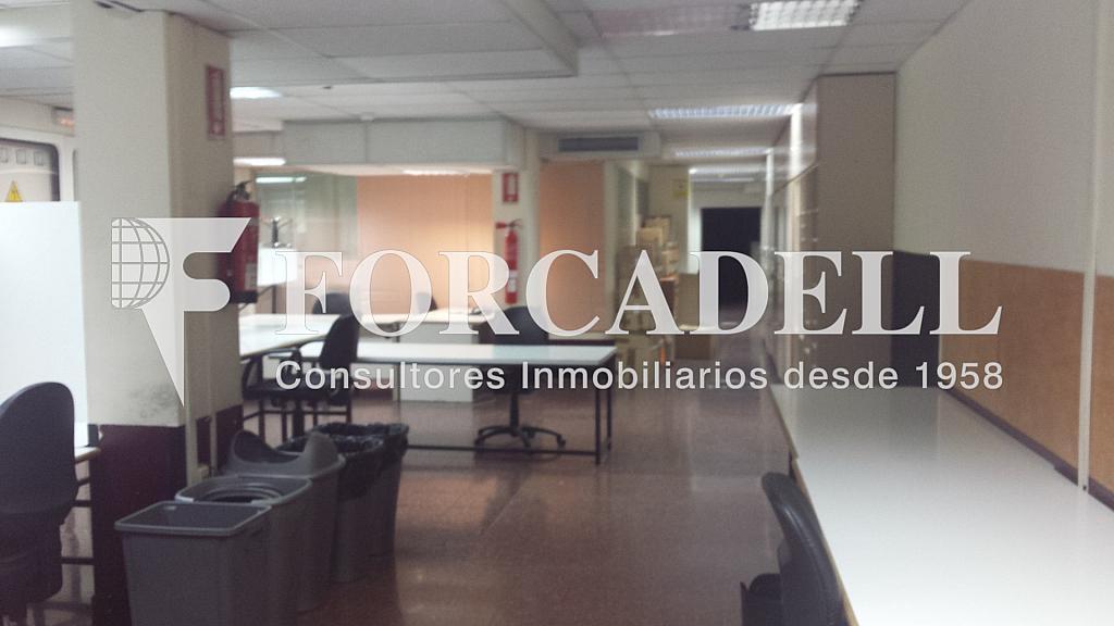 20140324_132320 - Oficina en alquiler en Eixample dreta en Barcelona - 298926497