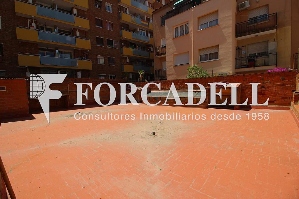 IMG_1520 - Local comercial en alquiler en La Bordeta en Barcelona - 298926566