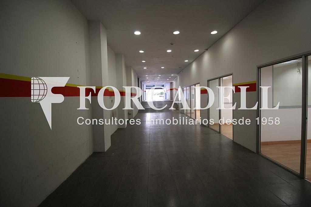 Enamorats (6) - Local comercial en alquiler en La Sagrada Família en Barcelona - 299407019