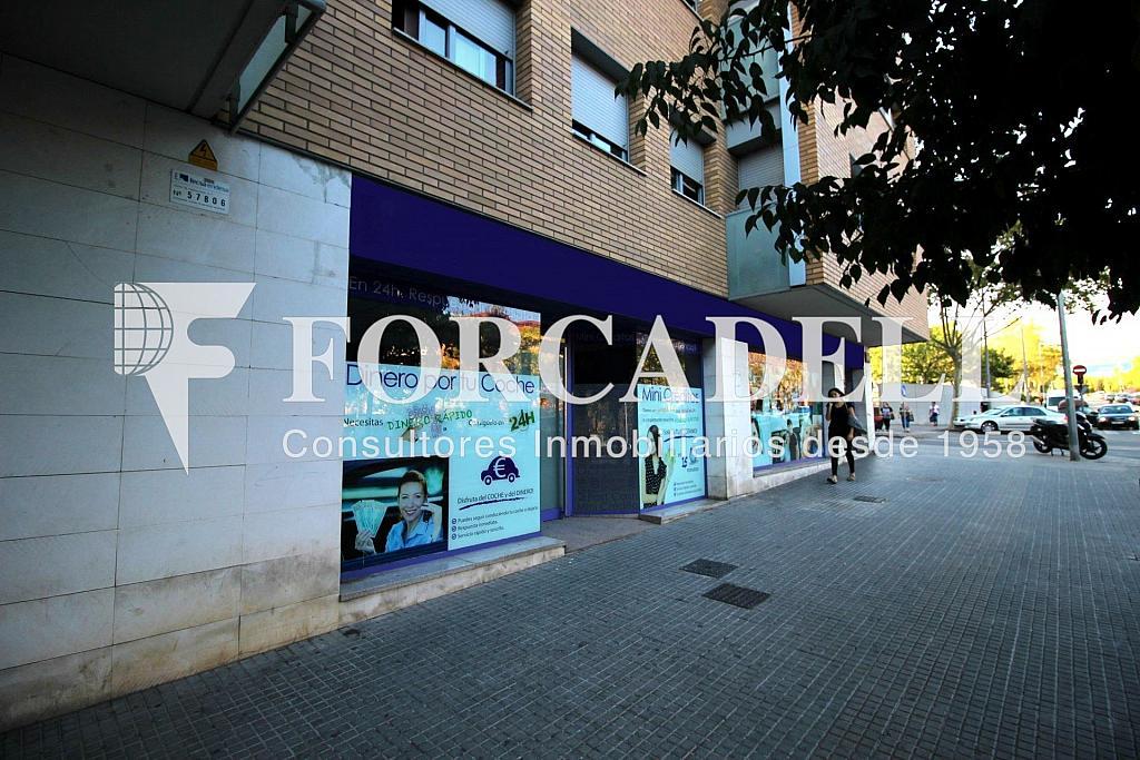 IMG_2929 - Local comercial en alquiler en Lloreda -La Pau en Badalona - 324108473