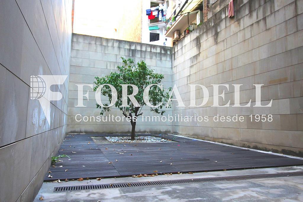 IMG_2670 - Local comercial en alquiler en Gràcia en Barcelona - 326919229