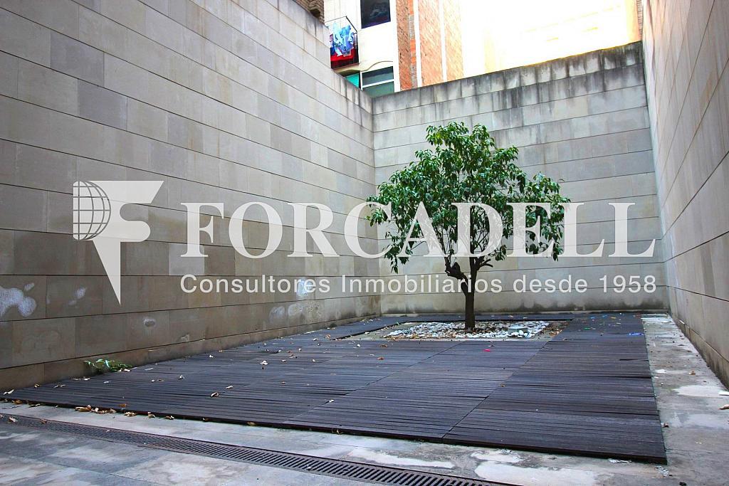 IMG_2671 - Local comercial en alquiler en Gràcia en Barcelona - 326919238