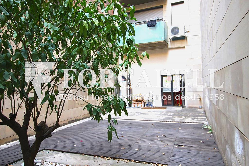 IMG_2673 - Local comercial en alquiler en Gràcia en Barcelona - 326919244