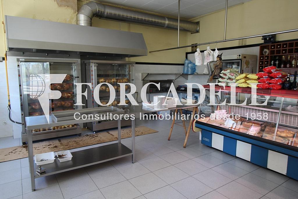 IMG_6095 - Local comercial en alquiler en Sant Boi de Llobregat - 326919517