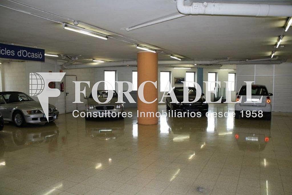 IMG_2278 - Local comercial en alquiler en Santa Eulàlia en Hospitalet de Llobregat, L´ - 261858901