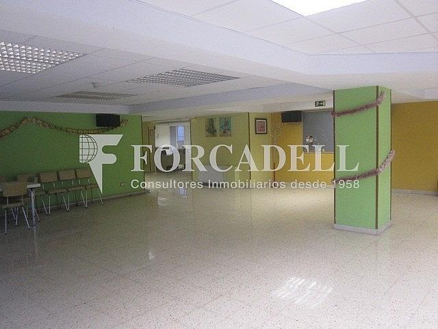 IMG_0318 - Oficina en alquiler en Sant Just Desvern - 261859618