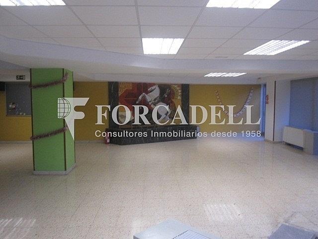 IMG_0317 - Oficina en alquiler en Sant Just Desvern - 261859621