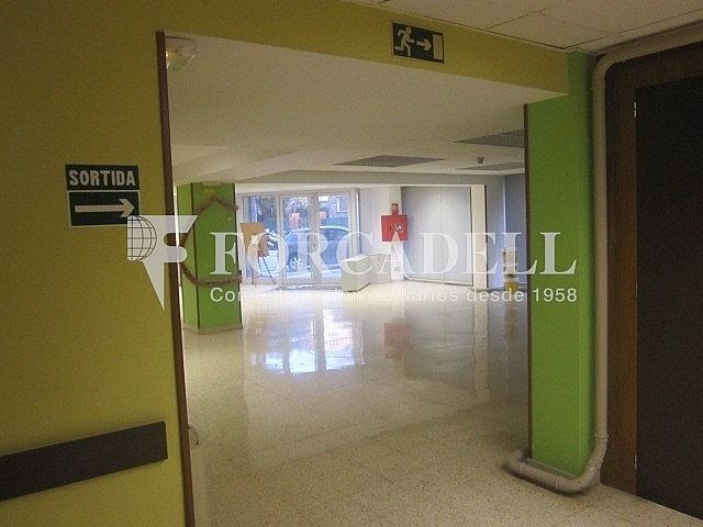 IMG_0325 - Oficina en alquiler en Sant Just Desvern - 261859624