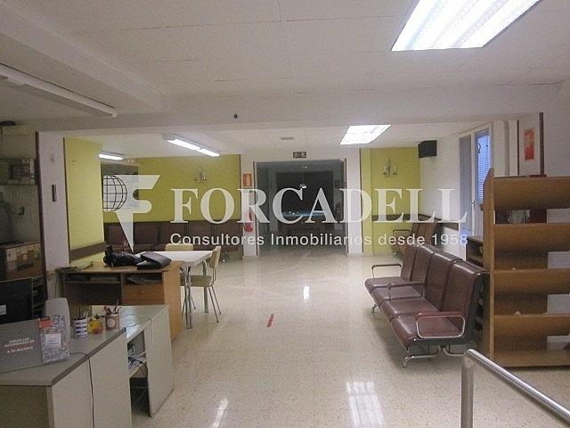 IMG_0327 - Oficina en alquiler en Sant Just Desvern - 261859627