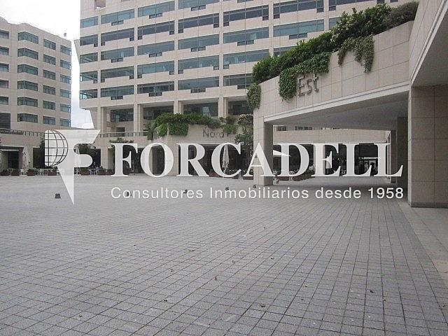 IMG_1632 - Local comercial en alquiler en El Raval en Barcelona - 261860374