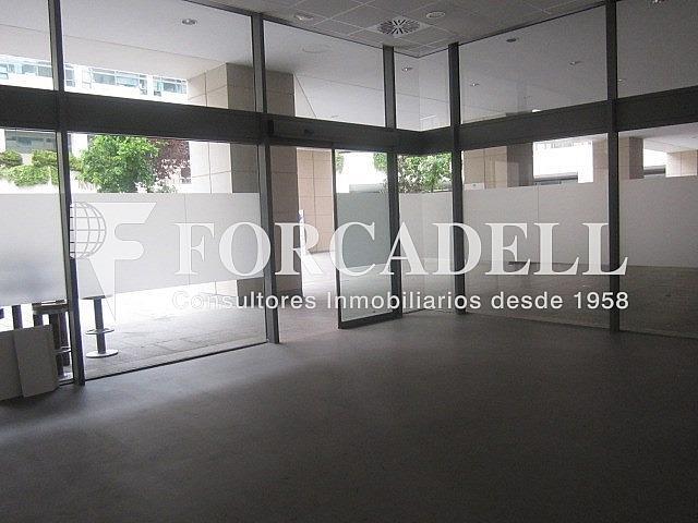 IMG_1651 - Local comercial en alquiler en El Raval en Barcelona - 261860395