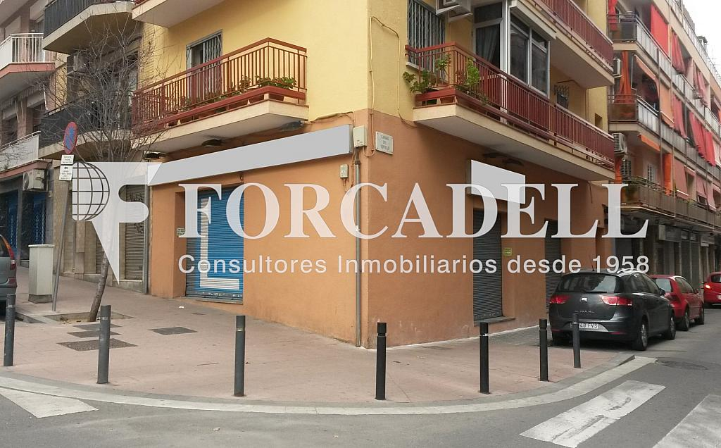 Vinyar (10) - Local comercial en alquiler en La Prosperitat en Barcelona - 261861148