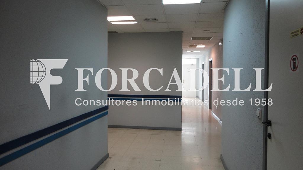DSC01184 - Local comercial en alquiler en Les corts en Barcelona - 261862729