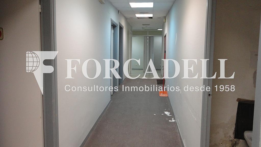 DSC01185 - Local comercial en alquiler en Les corts en Barcelona - 261862732