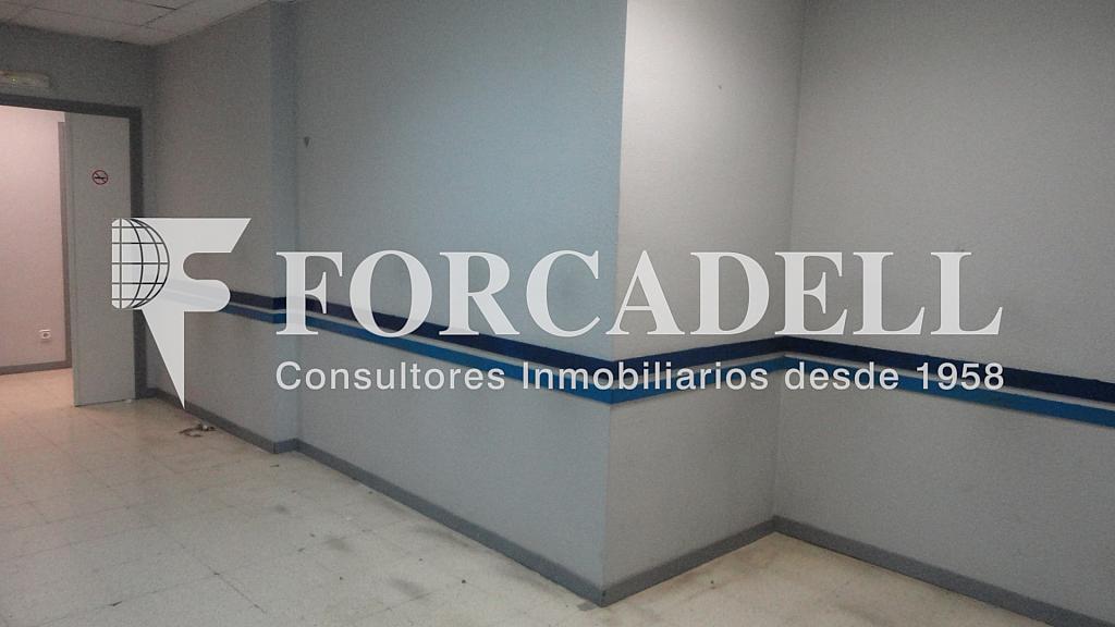 DSC01179 - Local comercial en alquiler en Les corts en Barcelona - 261862747