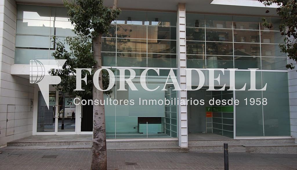 IMG_4377 - copia - Oficina en alquiler en Sant Gervasi – La Bonanova en Barcelona - 261863104