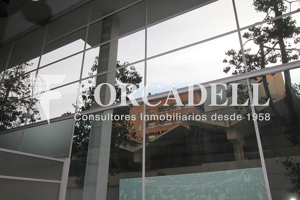 IMG_4308 - Oficina en alquiler en Sant Gervasi – La Bonanova en Barcelona - 261863158