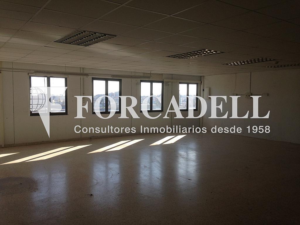 IMG_3197 - Nave en alquiler en calle Alemanya, Lloreda -La Pau en Badalona - 266466393