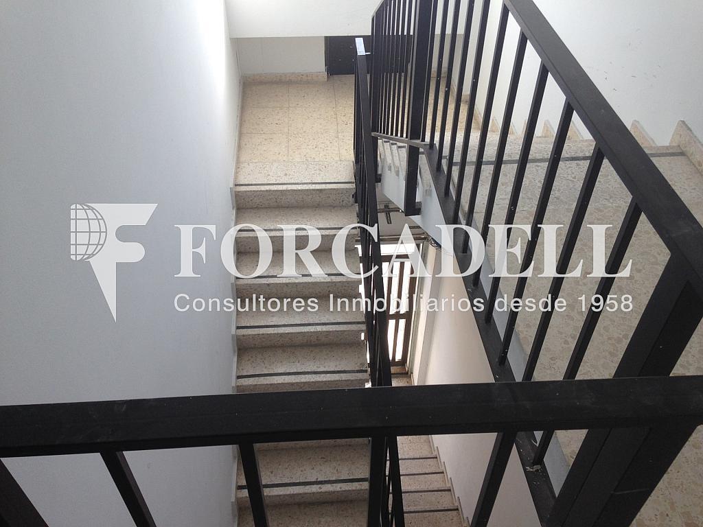 IMG_3198 - Nave en alquiler en calle Alemanya, Lloreda -La Pau en Badalona - 266466405