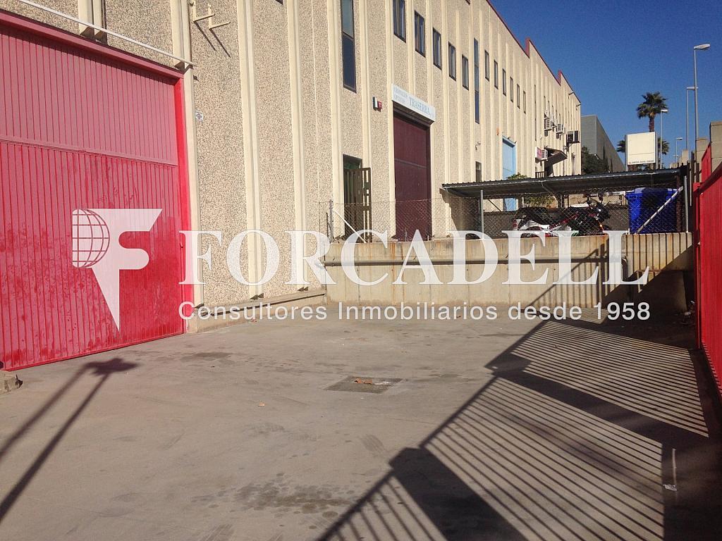 IMG_3186 - Nave en alquiler en calle Alemanya, Lloreda -La Pau en Badalona - 266466411