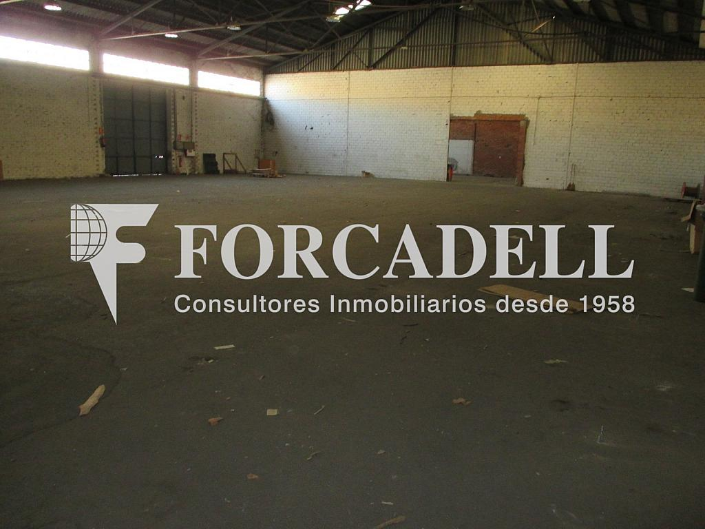 Interior nau (3) - Nave industrial en alquiler en calle Puigcerdà Nave, Lliçà de Vall - 266473398