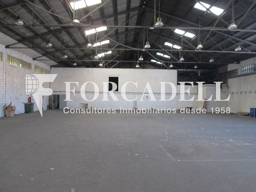 Interior nau (5) - Nave industrial en alquiler en calle Puigcerdà Nave, Lliçà de Vall - 266473404
