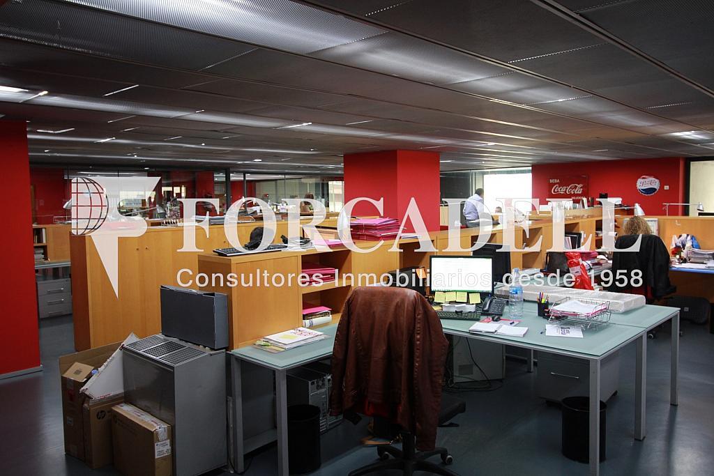 IMG_4334 - Nave industrial en alquiler en calle Pujades, El Parc i la Llacuna en Barcelona - 266473923