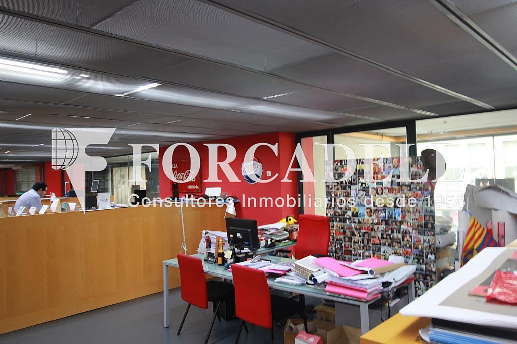 IMG_4331 - Nave industrial en alquiler en calle Pujades, El Parc i la Llacuna en Barcelona - 266473932