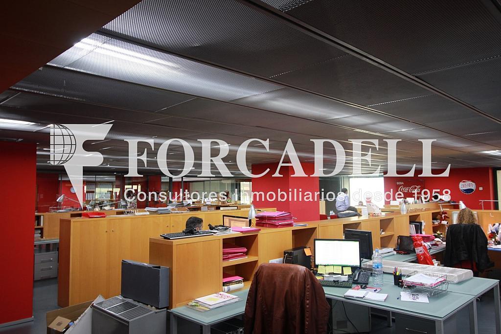 IMG_4333 - Nave industrial en alquiler en calle Pujades, El Parc i la Llacuna en Barcelona - 266473935