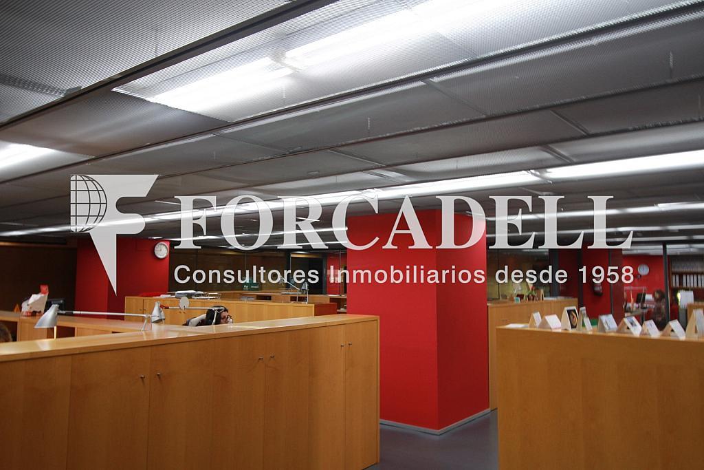 IMG_4332 - Nave industrial en alquiler en calle Pujades, El Parc i la Llacuna en Barcelona - 266473941