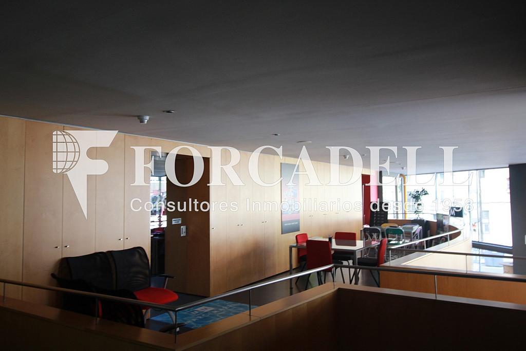 IMG_4336 - Nave industrial en alquiler en calle Pujades, El Parc i la Llacuna en Barcelona - 266473947