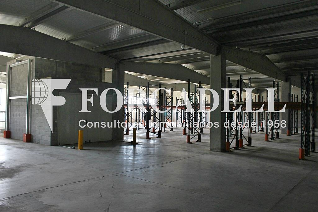 IMG_1588 - Nave industrial en alquiler en calle Can Barneda, Ripollet - 266464113