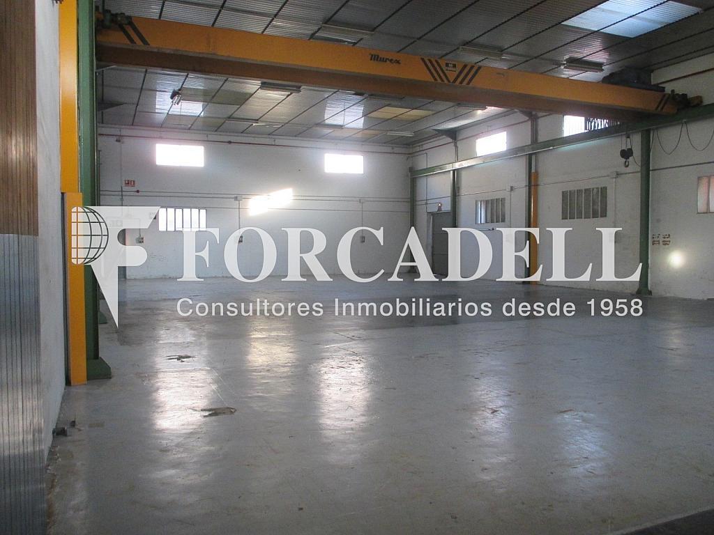 IMG_1841 - Nave industrial en alquiler en calle Anoia, Santa Perpètua de Mogoda - 341284363