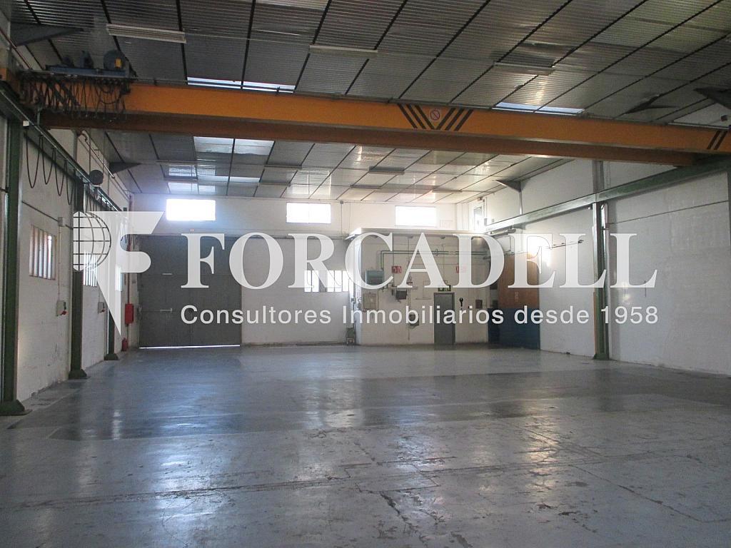 IMG_1844 - Nave industrial en alquiler en calle Anoia, Santa Perpètua de Mogoda - 341284366