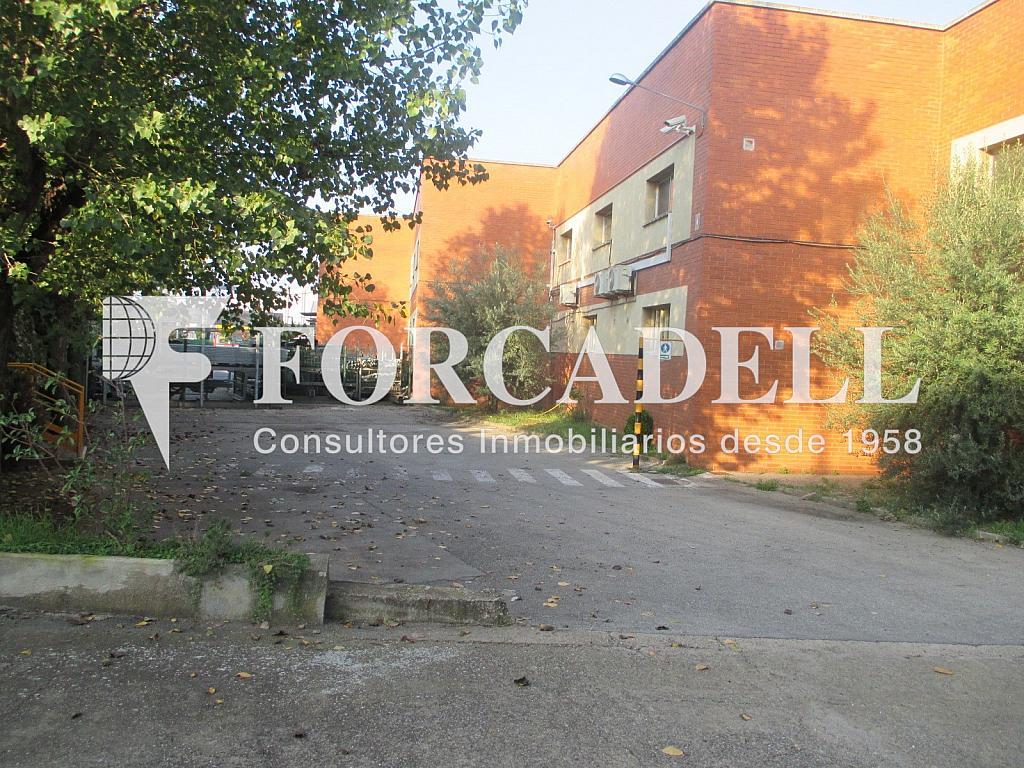 IMG_1850 - Nave industrial en alquiler en calle Anoia, Santa Perpètua de Mogoda - 341284375