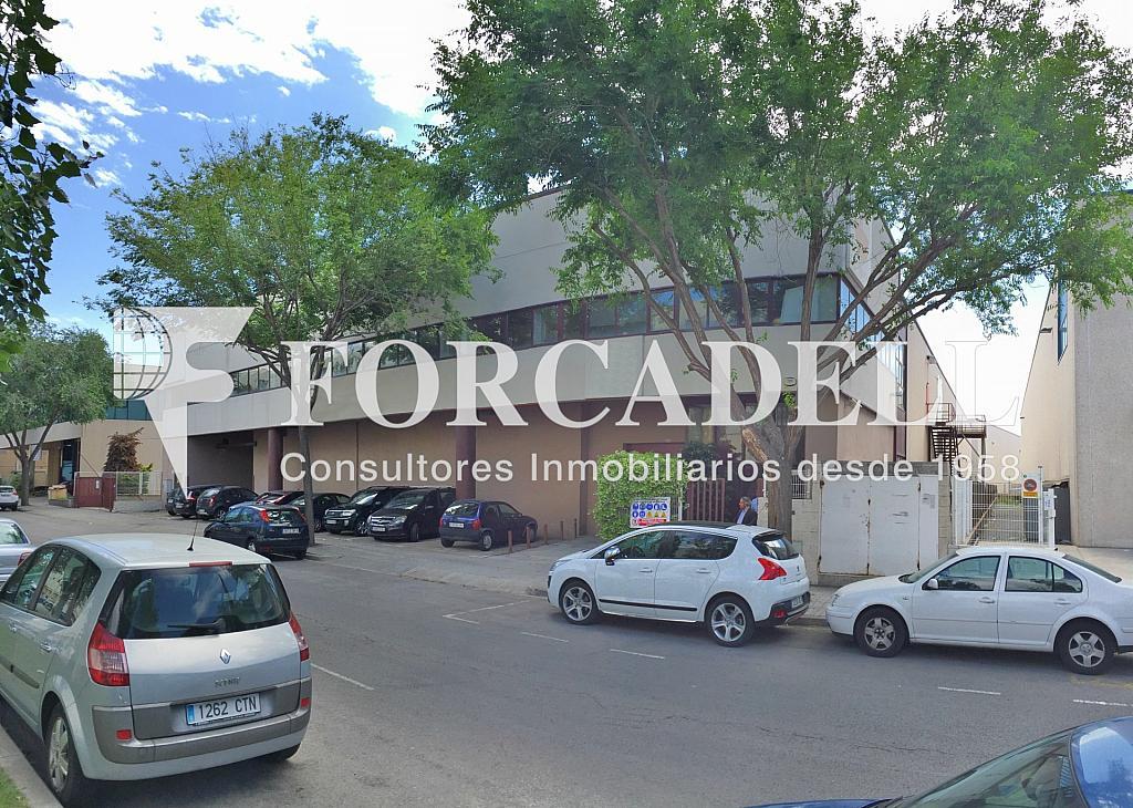 IMG_3824 - Nave industrial en alquiler en calle Rafael Barradas, Gran Via LH en Hospitalet de Llobregat, L´ - 283724260