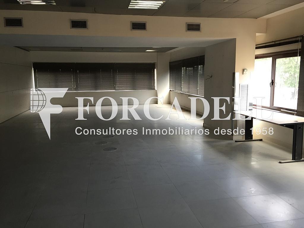 IMG_3818 - Nave industrial en alquiler en calle Rafael Barradas, Gran Via LH en Hospitalet de Llobregat, L´ - 283724263