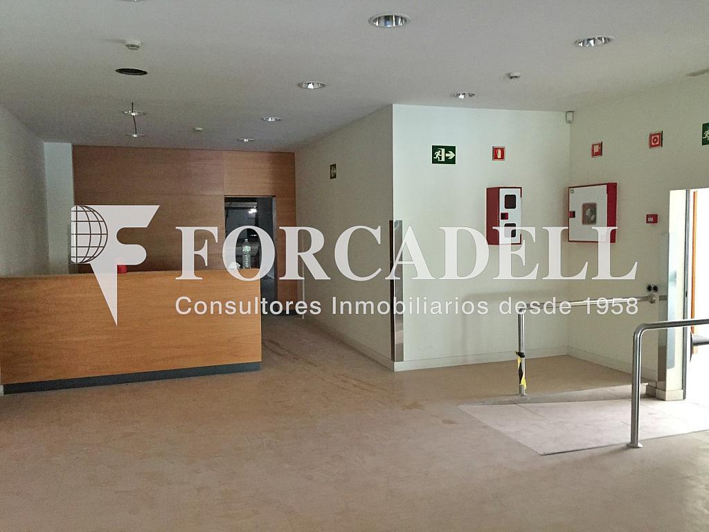 IMG_3821 - Nave industrial en alquiler en calle Rafael Barradas, Gran Via LH en Hospitalet de Llobregat, L´ - 283724272