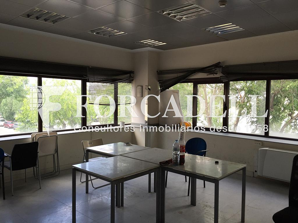 IMG_3822 - Nave industrial en alquiler en calle Rafael Barradas, Gran Via LH en Hospitalet de Llobregat, L´ - 283724275