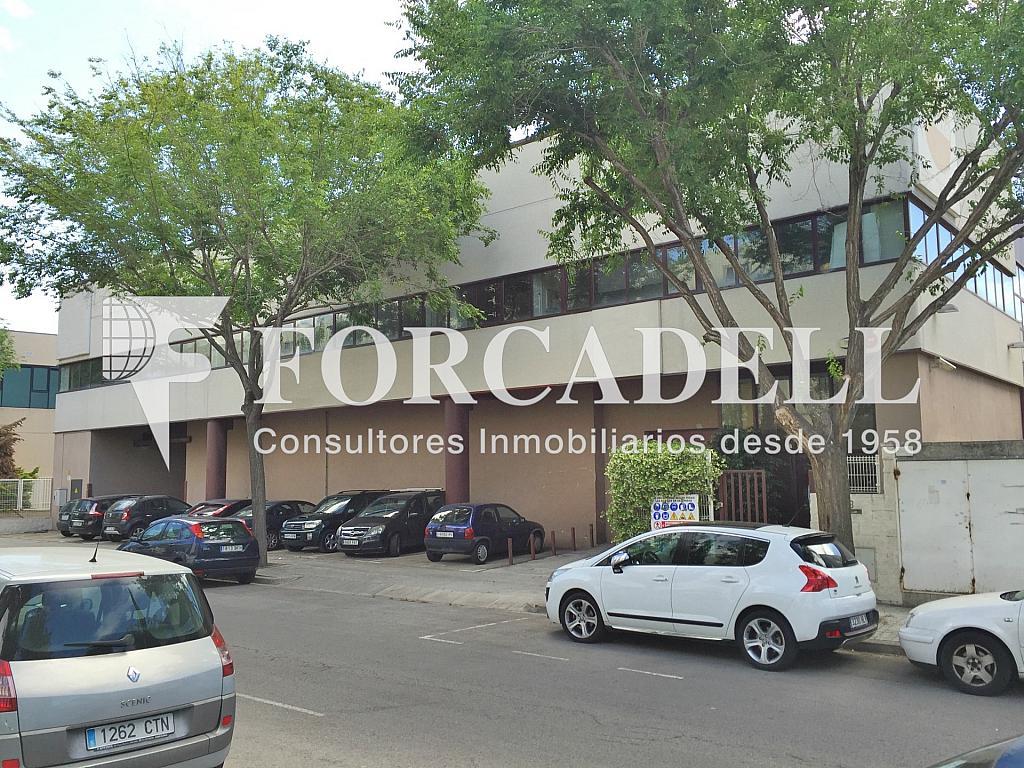 IMG_3823 - Nave industrial en alquiler en calle Rafael Barradas, Gran Via LH en Hospitalet de Llobregat, L´ - 283724278