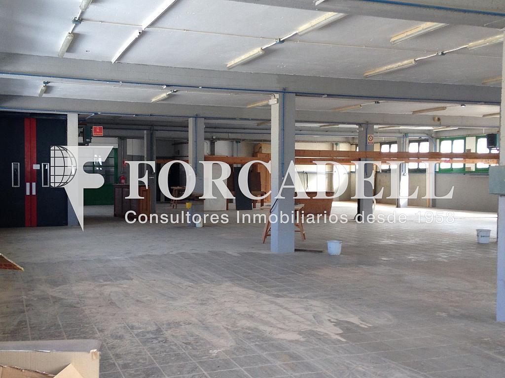 IMG_5497 - Nave industrial en alquiler en calle De la Riera, Sant Just Desvern - 283724359