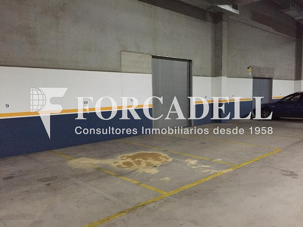 IMG_3555 - Nave industrial en alquiler en calle Sant Ferran, Sabadell - 283724482