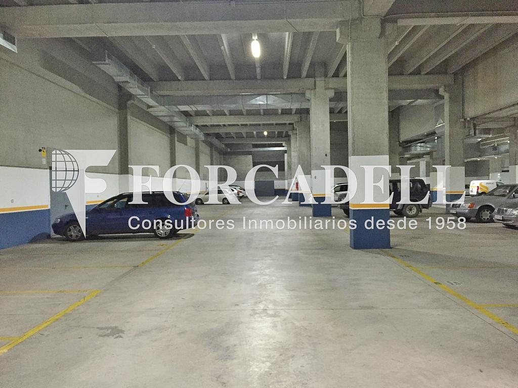 IMG_3556 - Nave industrial en alquiler en calle Sant Ferran, Sabadell - 283724485