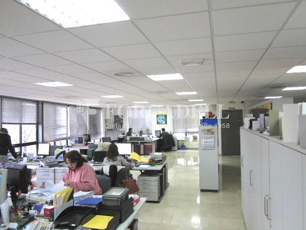 Foto oficinas - Nave industrial en alquiler en calle Miguel Hernández, Gran Via LH en Hospitalet de Llobregat, L´ - 292764733