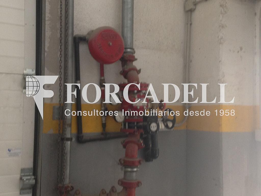 IMG_0882 - Nave industrial en alquiler en calle Eduard Maristany, Sant Roc-El Remei en Badalona - 320936372