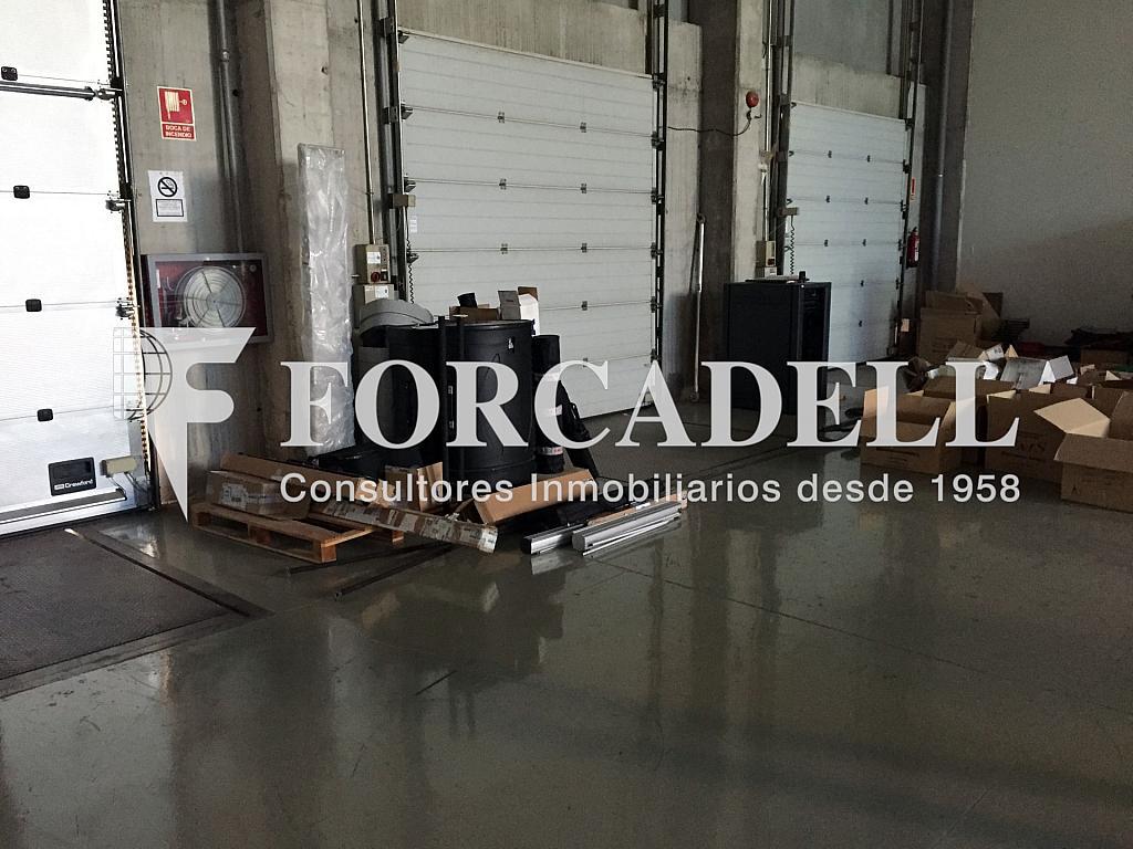 IMG_4054 - Nave industrial en alquiler en calle Ciències, Gran Via LH en Hospitalet de Llobregat, L´ - 313351382
